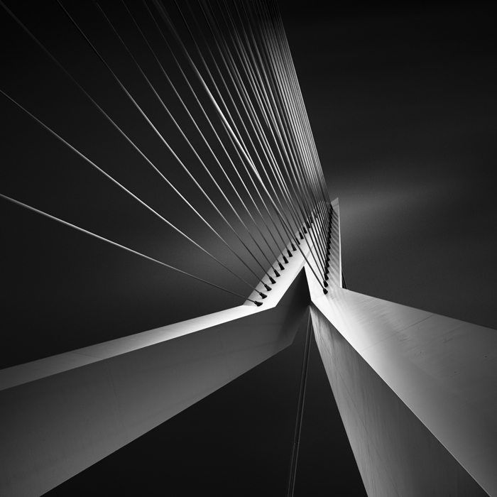 (8) Erasmus Bridge (c) Joel Tjintjelaar This is the leading image from the Shape of Light series.