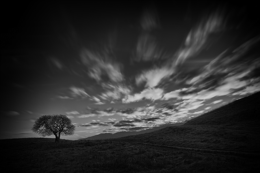 """Poet's Elysium"" (c) John Kosmopoulos A lone tree sits on the hill at dusk about an hour from San Francisco [Ed. Note: Deer Island in Novato]. The clouds are streaming across the sky in brilliant motion and colour. I decided to use a 16-stop long exposure technique as an artistic choice to be able to capture the dimming of the light while the clouds streamed across the detail in the foreground. I converted the image to black and white using Silver Efex Pro 2 (SEP2) and adding some dodging and burning in PS6. The image is poetic, as the title implies, as it strikes me with images of sitting beneath the tree and contemplating the universe. This is one example of the ""felt aesthetic"". Great memories are also attached to this image for me."