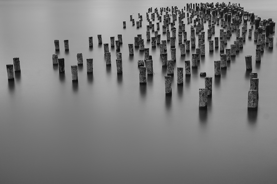 """To Live & Breathe in New York"" (c) John Kosmopoulos These are wood pilings near Brooklyn Bridge Park. I purposefully composed this photograph with negative space at the bottom. The photo depicts the island of Manhattan as microcosm where the pilings act as skyscrapers and the water acts as the three rivers surrounding the island. It is not a ""typical"" composition but it highlights my notion of ""oramagraphy"". I once again used SEP2 while playing with some tones and sharpening the pilings."