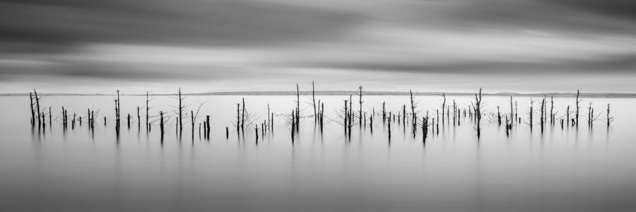 """Whispers"" (c) Darren Moore I was completely inspired to visit this location after Keith Aggett and Andy Brown posted some stunning images of these submerged trees on their Flickr pages. It was important for me to present this in a different way to what I had previously seen (take inspiration from those you admire, don't just copy) and a good opportunity to step outside my comfort zone and try something different. I chose to create a panorama for those reasons. The image consists of three, four-minute exposures stitched together in Adobe Photoshop CS6 using the 'photomerge' function. It did a good job of piecing the trees together, but couldn't merge the sky correctly, so I had to create my own panorama of the sky, manually blend it together and then add it to the panorama Photoshop had created. I then cropped to a 3:1 ratio and made the final tonal adjustments in Lightroom."