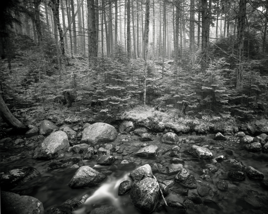"""Hunter Brook"" (c) Nate Parker"