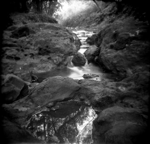 Finding the stillness (c) J. M. Golding