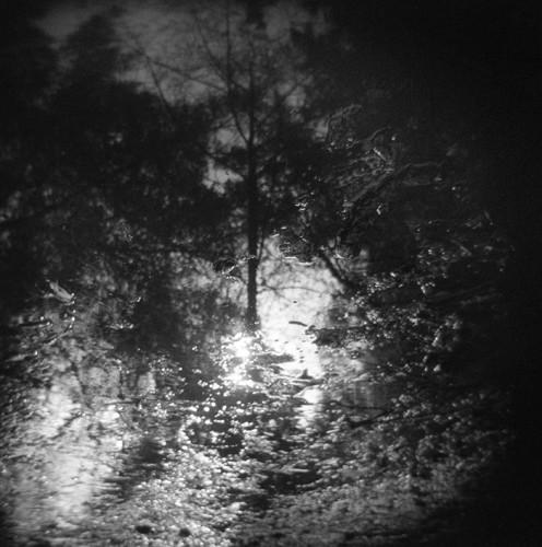 Vulnerable without fear (c) J. M. Golding